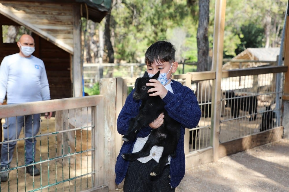 antalya hayvanat bahcesinde yeni yavrular 3 uKF1ri4L