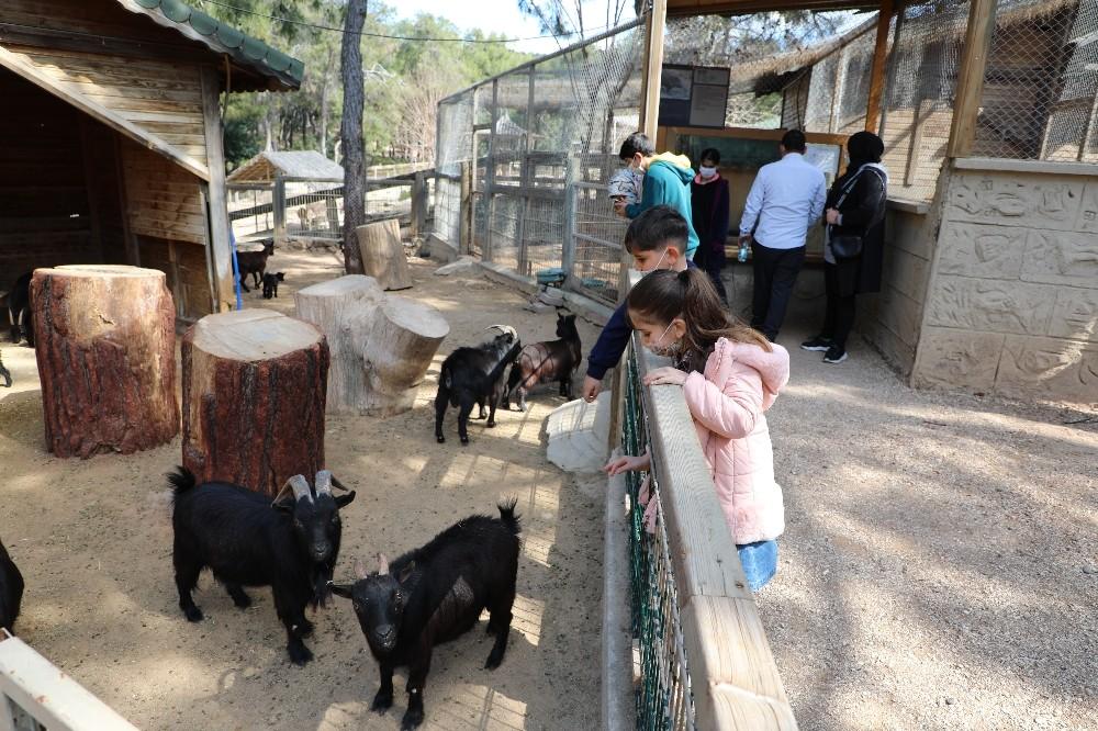 antalya hayvanat bahcesinde yeni yavrular 5
